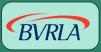 Partner British Vehicle Rental and Leasing Association